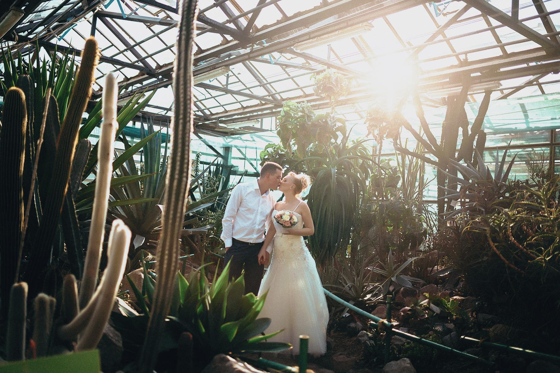 Ботанический сад свадебная фотосессия